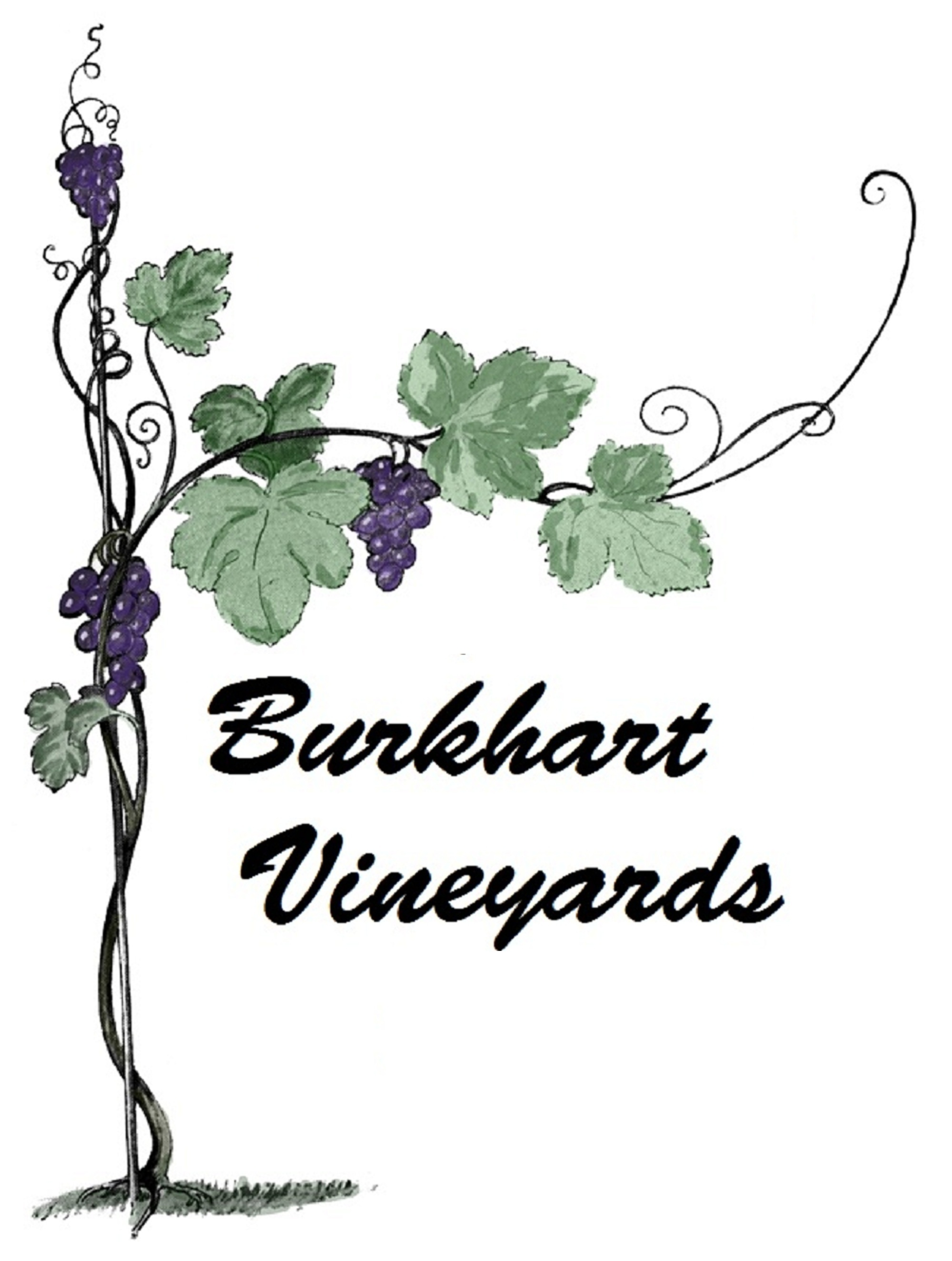 Burkhart Vineyards Logo Large 4